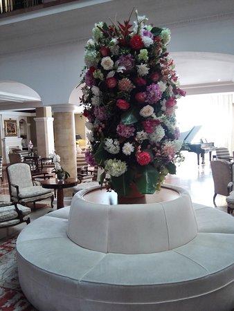 Foto de Hotel Candido