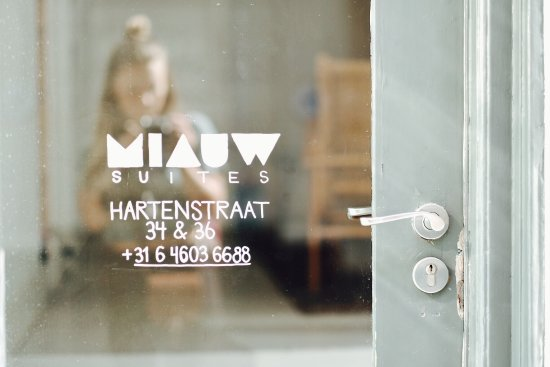 Miauw Suites: Entrance