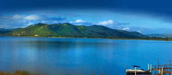 Pine Lake Marina Bild
