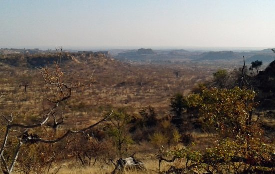 Mapungubwe National Park, Sør-Afrika: Mapungubwe hill in the distance