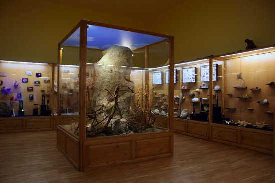 Regional Natural History Museum of Plovdiv