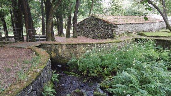 Vimianzo, สเปน: El conjunto del batán, molinos y el río es un entorno lleno de belleza y armonía.