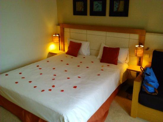 Dinant Castel de Pont à Lesse : Romantisch verblijf met rozenblaadjes op het bed