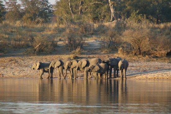 Caprivi Region, Namibia: Sunset tour