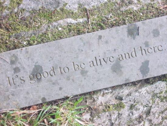 Ashford, Ireland: Nothing to add....