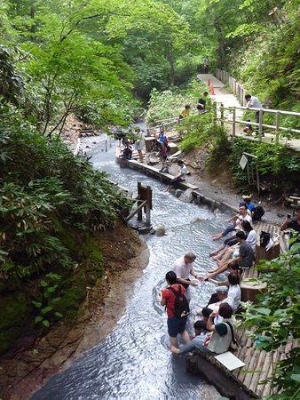 大湯沼川の天然足湯 Picture