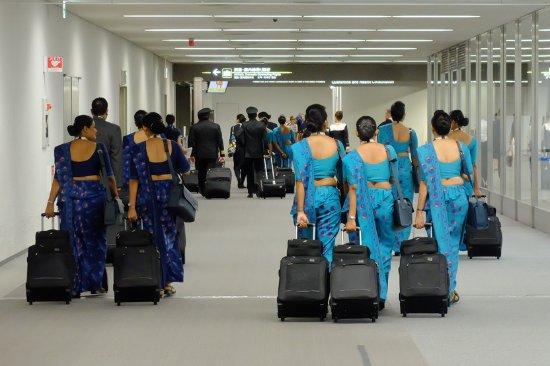 復路便:成田空港ターミナル。搭乗機のスリランカ航空乗務員。 - Foto ...