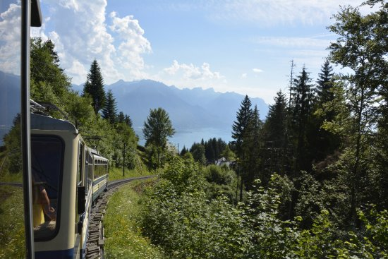 Train qui descend des Rochers-de-Naye