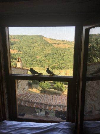 Arcidosso, Italy: UItzicht vanuit de kamer