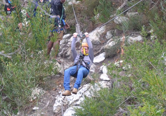Hermanus Forest Adventures: Dad in action