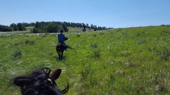 Akmola Province, Kazakhstan: burabay horse riding