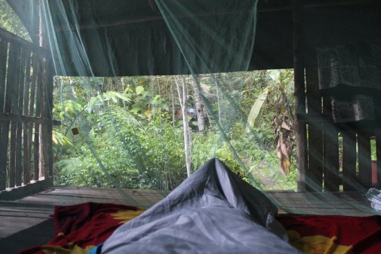 Lupa Masa Rainforest Camp Picture