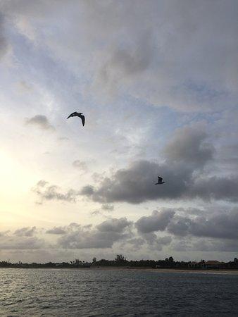 辛普森灣張圖片