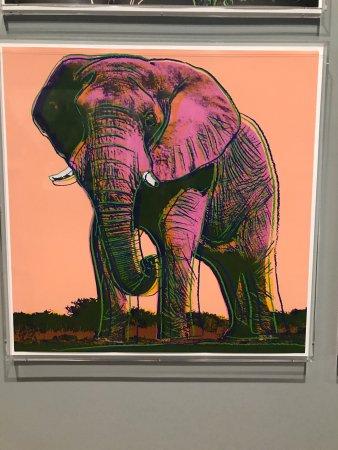 Bentonville, AR: Elephant by Andy Warhol at Crystal Bridges