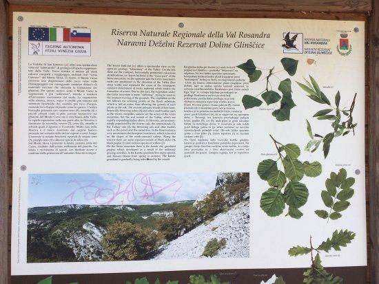San Dorligo della Valle-Dolina, إيطاليا: photo3.jpg