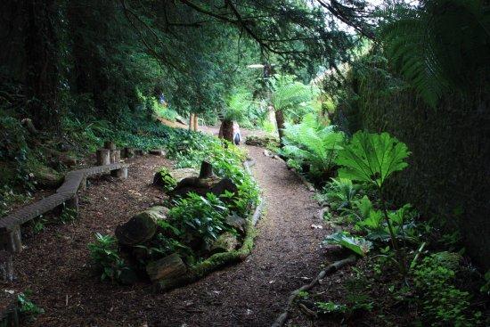 Lismore, Ireland: Lower Garden