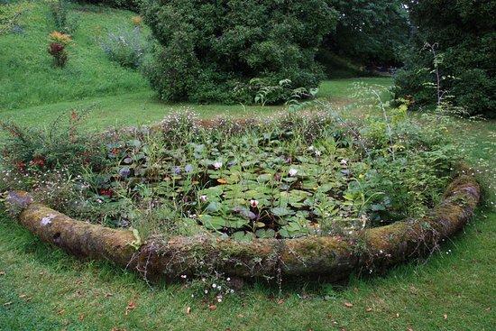 Lismore, Ireland: Pond