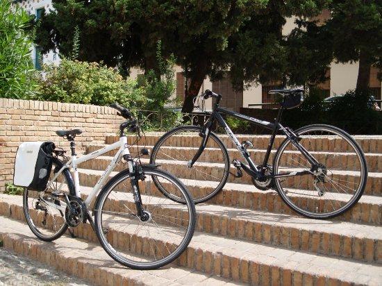 Bicicletas La Estación
