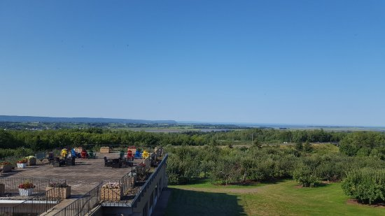 Old Orchard Inn & Spa: The view from our room