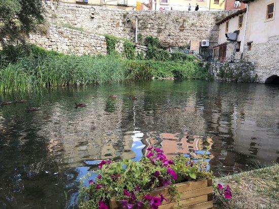 Molino de Palacios: Río