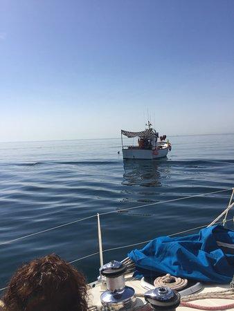 Turismo Marinero Costa del Sol: getting close to local fish boat to sea the flying-fish