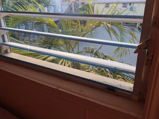 Tropical Paradise Hotel: photo2.jpg