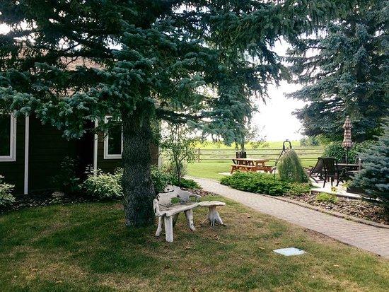 Strathmore, Canadá: FB_IMG_1502469635558_large.jpg