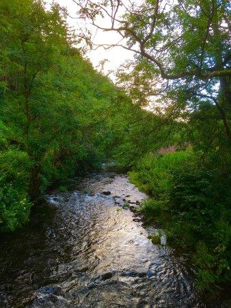 Glendevon, UK: photo1.jpg