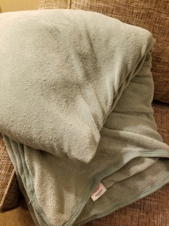 Embassy Suites by Hilton Secaucus - Meadowlands: We ask for a complete set of bedding. This nasty blanket is what housekeeping brought us