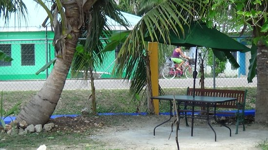 Belmopan, Belize: Cool Reading Spot.