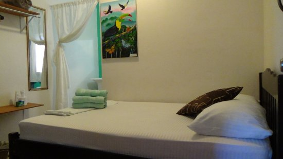 Belmopan, Belize: Rainforest Room