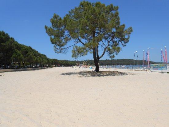 Maubuisson, Francia: Plage du lac d'Hourtin