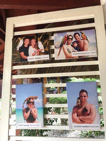 VIK Hotel Arena Blanca : photo2.jpg