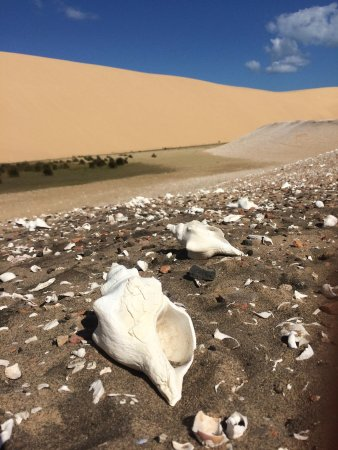 Vilanculos, Mozambique: A mountain full of shells on Bazaruto Island