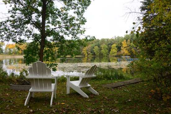 Osage, MN: View of LadySlipper Springs from the fire pit area.
