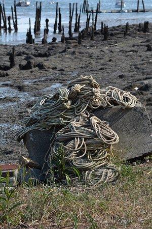 Wiscasset, ME: photo5.jpg