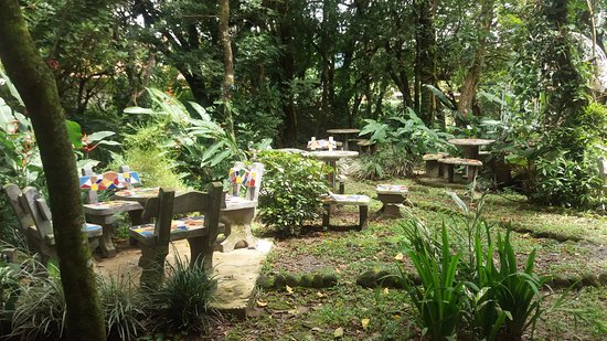 El Valle Gourmet&Coffee Shop : Back garden