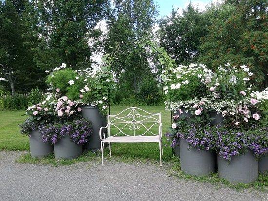 Mikkeli, Finlandia: Levähdyspaikka