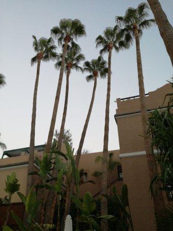 Les Jardins de la Medina: TA_IMG_20170811_202401_large.jpg