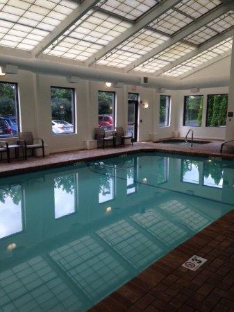 Hampton Inn Boston-Logan Airport: Pool