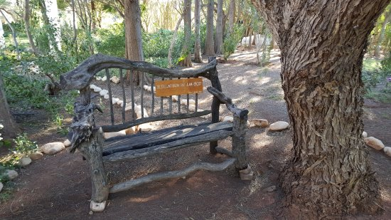 McGregor, Republika Południowej Afryki: Unique & Tranquil Gardens.....a place of stillness