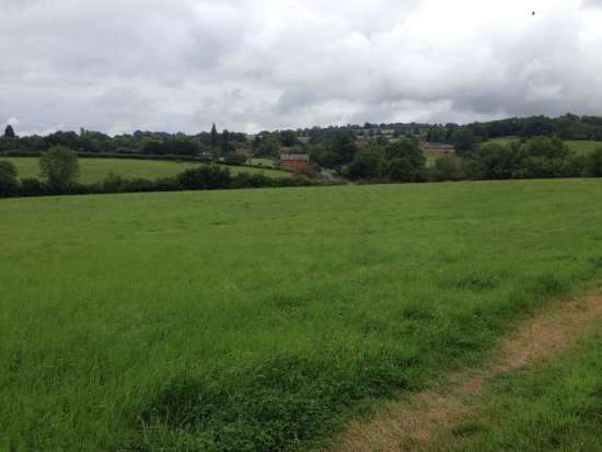 Shipston-on-Stour, UK: Stunning fields and green land all around!