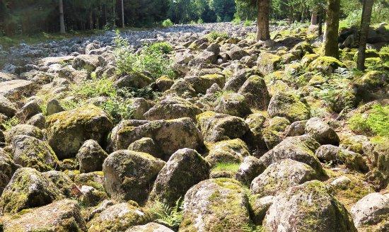 Granges-Sur-Vologne, فرنسا: Le Champ de roches à Barbey-Seroux, juillet 2017