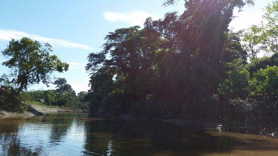 Amazonas Department, Colombia: En el Río Gamboa - afluente del Río del Amazonas