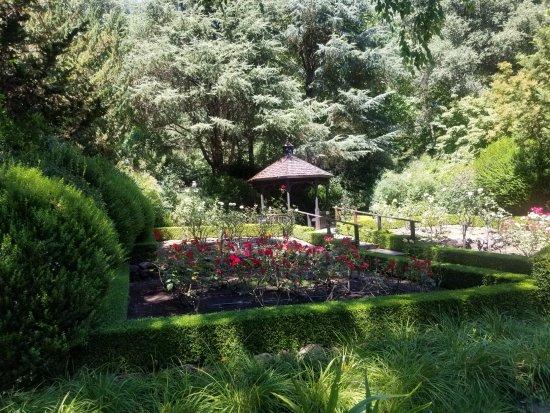 Healdsburg, CA: Impressive gardens