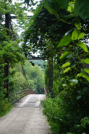 Swinging Bridge: photo1.jpg