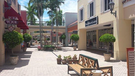 Estero, ฟลอริด้า: 20170811_135351_large.jpg