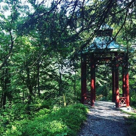 U.S. National Arboretum: A quiet spot in DC