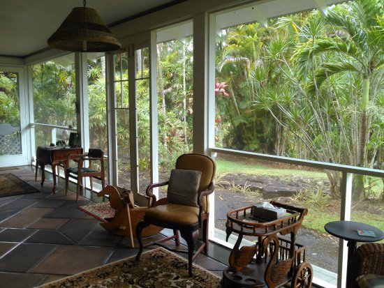 Maureen's Bed & Breakfast: Screened in comfort, Jungle Feeling