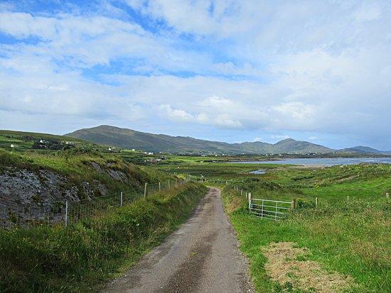Dundrum, أيرلندا: Walk to Allihies
